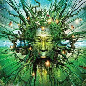 Shivadancer A Dream Within A Dream