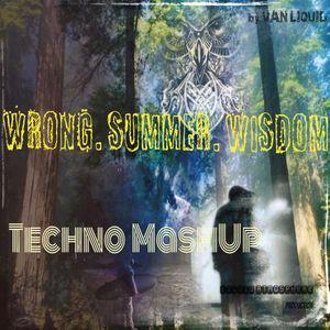 """Wrong.Summer.Wisdom"" Techno Mix"