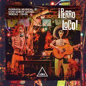 PERRO LOCO #13