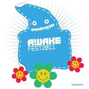 Riso at Awakenings Festival 2011 (Area A)
