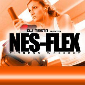 NES-FLEX