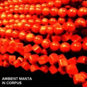 Ambient Manta - In Corpus