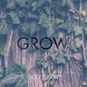 Grow #2 —God's Part