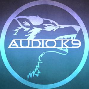 Audio K9 Big Room Club Promo Mix (2014)
