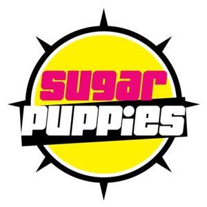 Sugar Puppies NYC Podcast