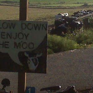 Moo Boost 20-06-2012