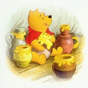Winnie Pooh - 1. Kapitel