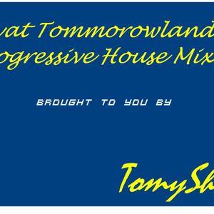 Vivat Tommorowland Progressive House Mix 2012