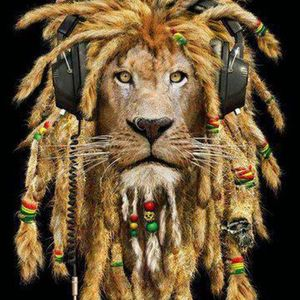 Jungle Rebels : Congo Natty Old and New Jungle Riddims