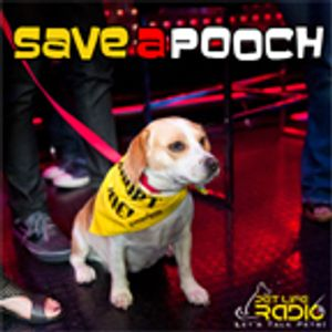 Save A Pooch - Episode 19 Money and Pets: How Deep Does Your Wallet Really Have To Be?