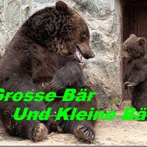 Grosse Bär und Kleine Bär - 6 - Back to the synth-ture part III