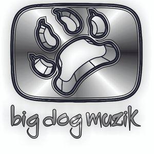 Organics 2012 Dj Stevie Gee Breaks mix