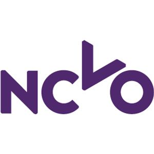 NCVO Trustee Conference 2013 - Effective governance: does your Board make a difference?
