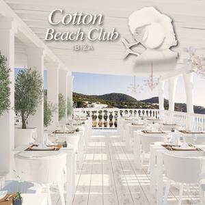 Cotton Beach Club November Session