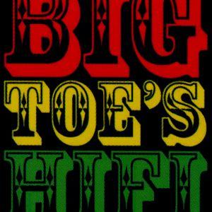 Big Toe's Hifi meets 40Hz, Toronto Sept 2012 featuring Dangerman on mic duties....