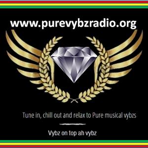 Pure Vybz Radio - One Love Tuesday Dj Red Lion 09 07 2019