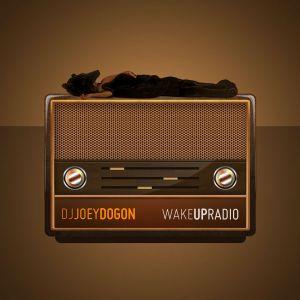 "DjJoeyDogon presents: DogonOrigins Vol. 2 ""A Soul Dela"""