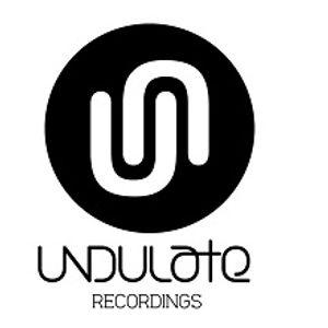 Undulate Radio 013 - Jay Tripwire