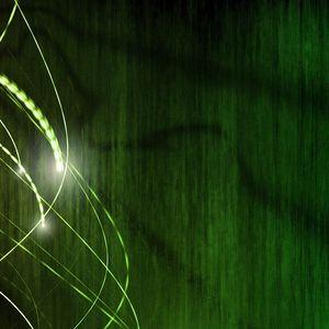 Evergreen Vibez