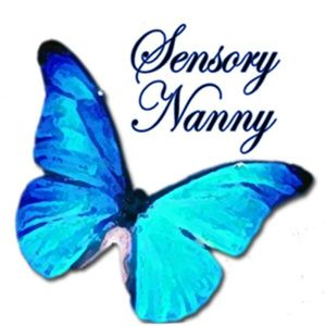 SensoryNanny-Give Your Child the Best Opportunity for Success