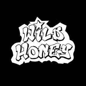 Wild Honey MHYH 28th April 2017 pt1