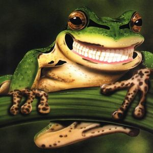 Frosch Gärtner @ Latte Mix