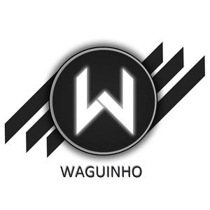 DJ WAGUINHO - FLASH HOUSE 01