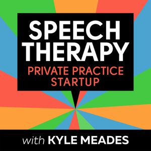 27: Bright, Shiny Objects (BSOs) - Speech Therapy Private Practice Startup Podcast