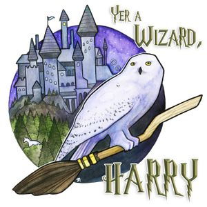 Yer a Wizard, Harry – Book 4, Episode 12: The Triwizard Tournament