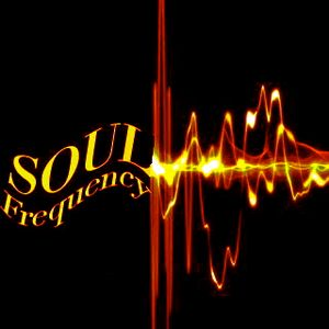 The Basement Sessions Vol.9(Soulfrequency Live Mix)