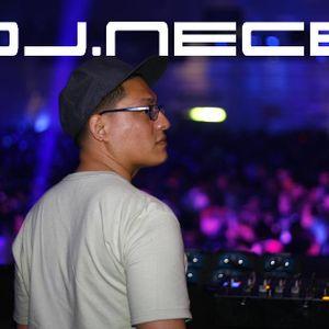 Dj.Nece Promo Mix 2011