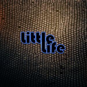 Little Life NYC Set