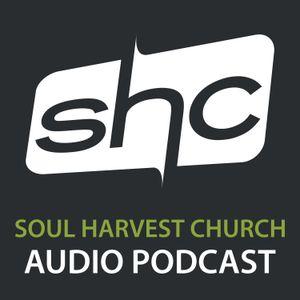 Soul Detox – The Heavy Soul