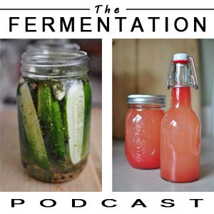 Episode 5 – Getting Started in Fermentation