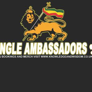 JUNGLE AMBASSADORS TERRY T DJ SOULJAH & MARCUS VISIONARY