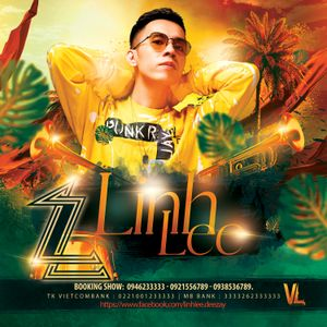 DJ LinhLee 0946233333 Artwork Image