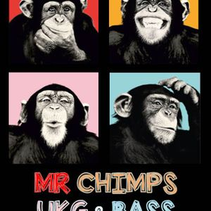 MR CHIMPS - WHO SAID UKG WAS DEAD VOL 3