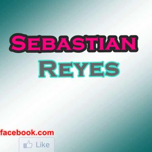 Sebastian Reyes - Party Mix (2012)