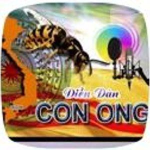 C.B.Ba(ng`chu-ng'hung`ho^n`cuo^c. tinh`que`qua(c.cua-ca(p.do^i hoan`hao-kha(m'tho^i'HonNhien+KhoMoi.