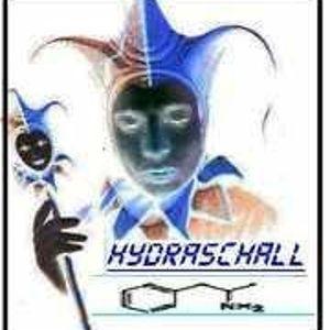 HydraSchall - Goamix 2008