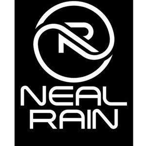 Neal Rain Artwork Image