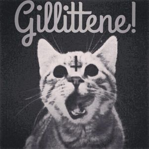 Gillittene 01