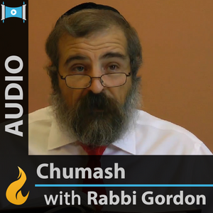 Rabbi Gordon - Matot-Massei: 4th Portion