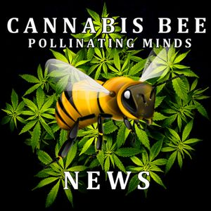 CBN045 – 8/16/13 General Cannabis Fridays – Time to legalize marijuana in Mexico City, Suns' Michael
