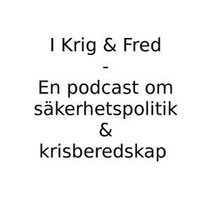 """Avsnitt 10: Ett samtal med författaren Chris Berg om """"Gråzon"""""""