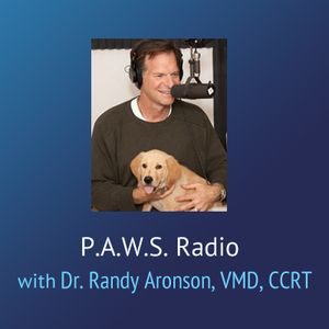 P.A.W.S. Radio – Vet Med Better Billing and The Price of Being a Vet.