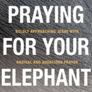 Day 8 of the Praying for Your Elephant — 21-Day Prayer Podcast