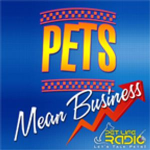 Pets Mean Business - Episode 20 Dr. Jessica Vogelsang: Supporting Animals and Their People During th