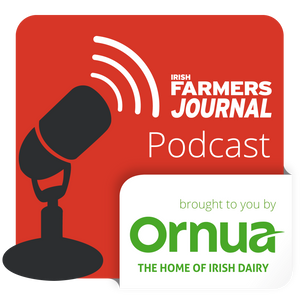 BSE, Brexit and tillage crisis fund - Podcast Ep. 95