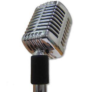RADIO COURCELLES sur Radio Canut le 26juin2015